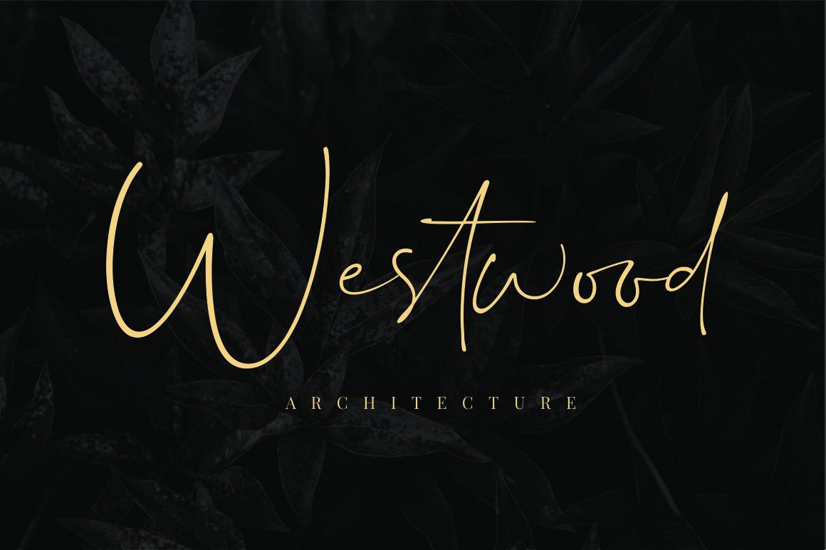 Dalmatins // Elegant Signature Font example image 5