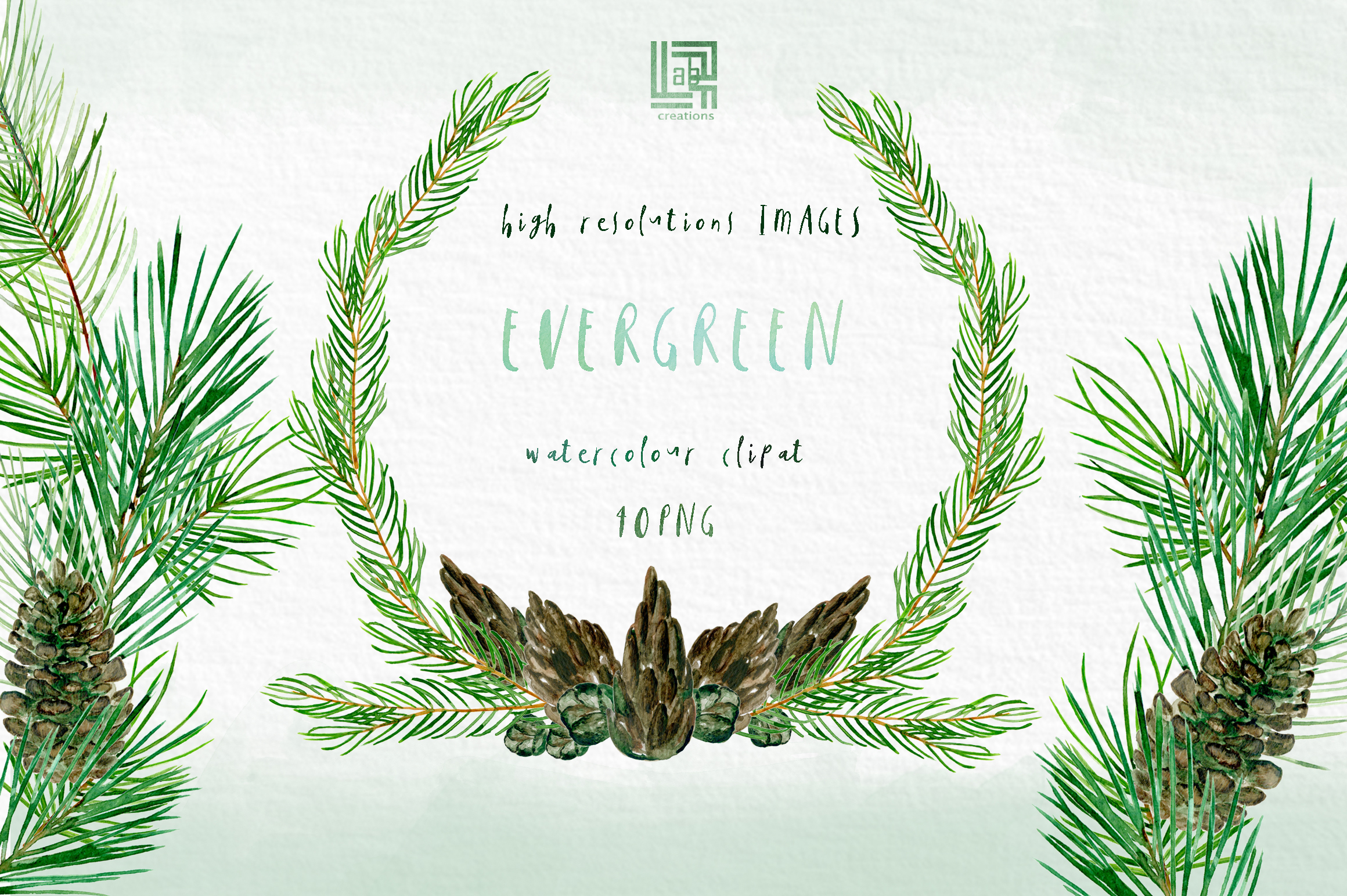 Evergreen. Watercolor clipart example image 4