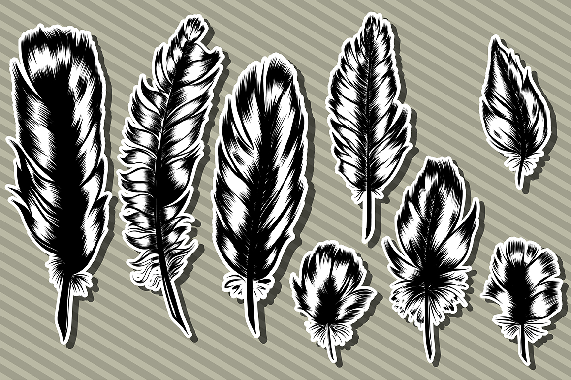 8 Hand Drawn Feathers set. example image 2