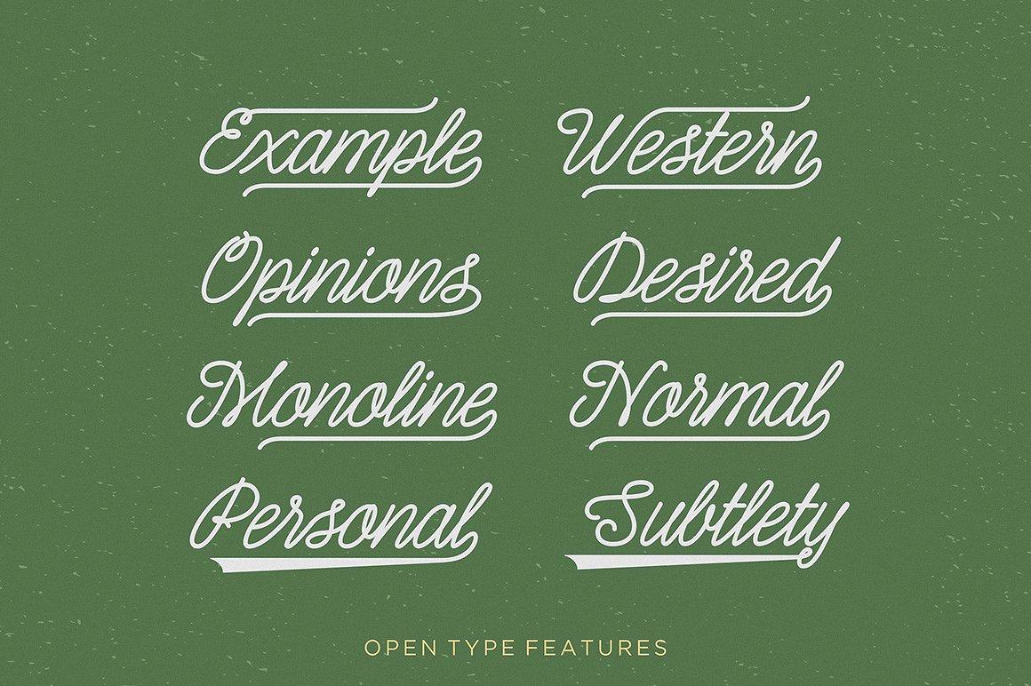 Shepia Script example image 5