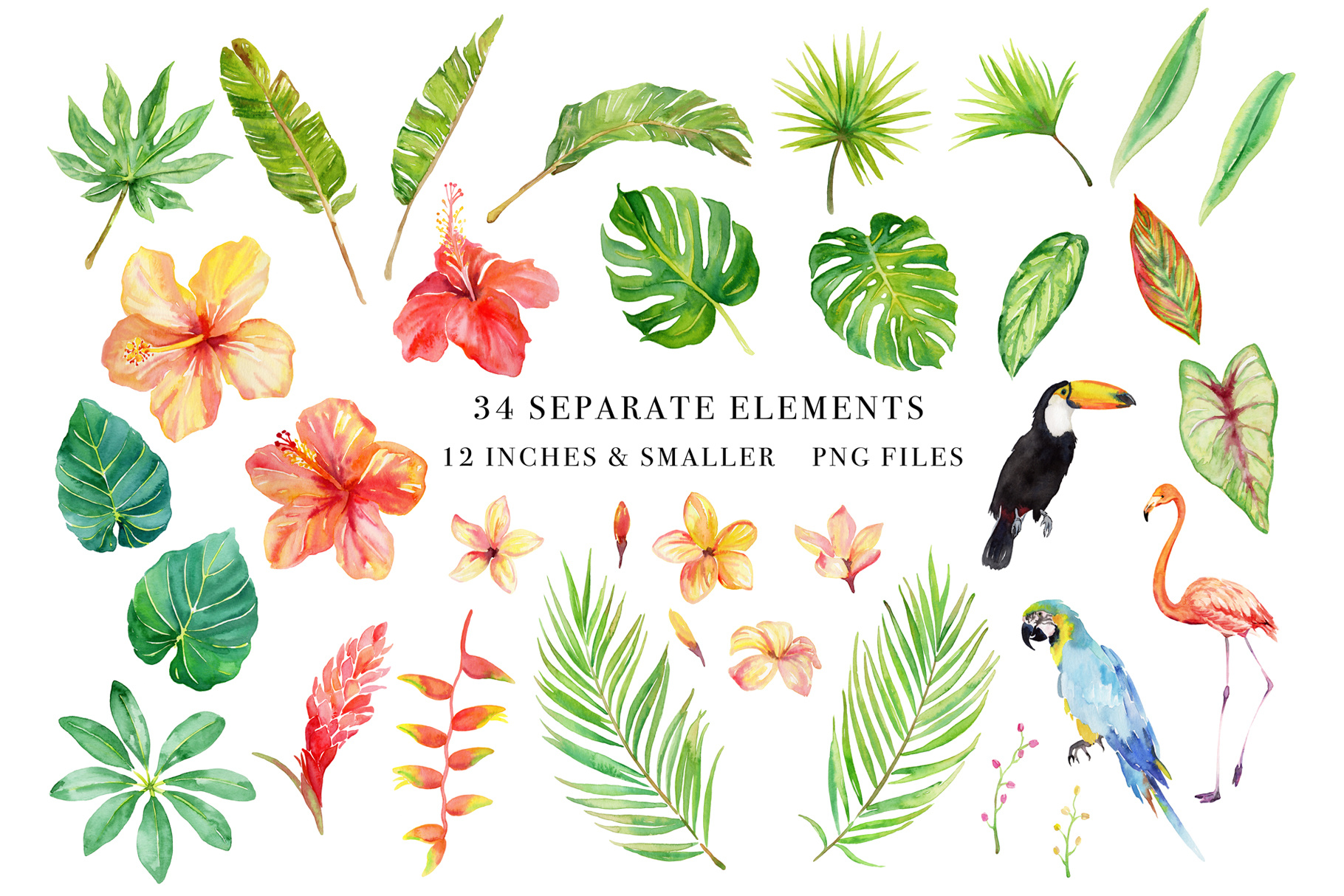 Tropical Botanicals Watercolor Set example image 2