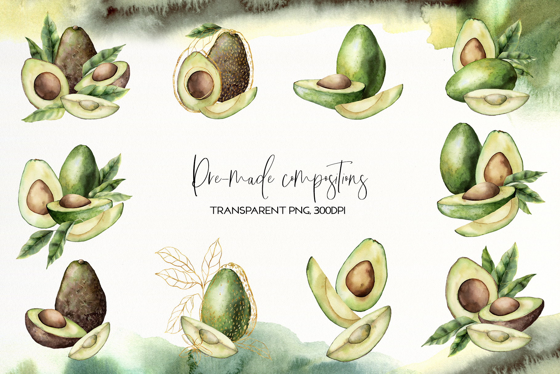 Avocado. Graphic collection example image 4