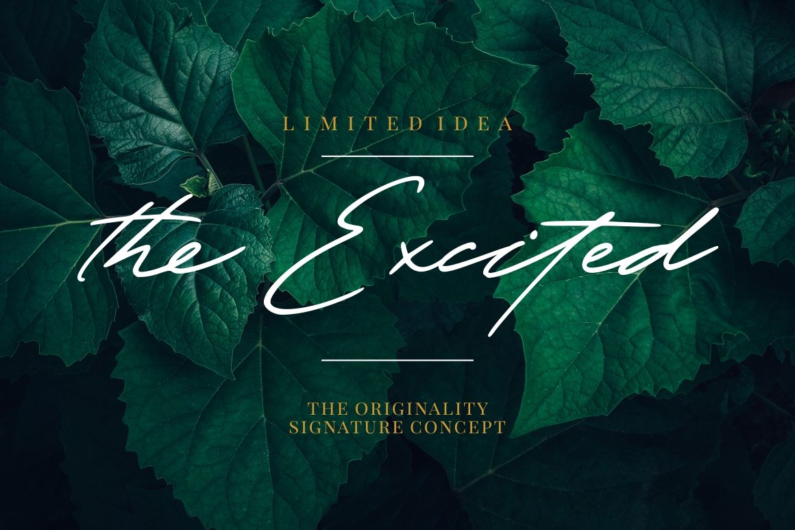 The Excited - Signature Font example image 1