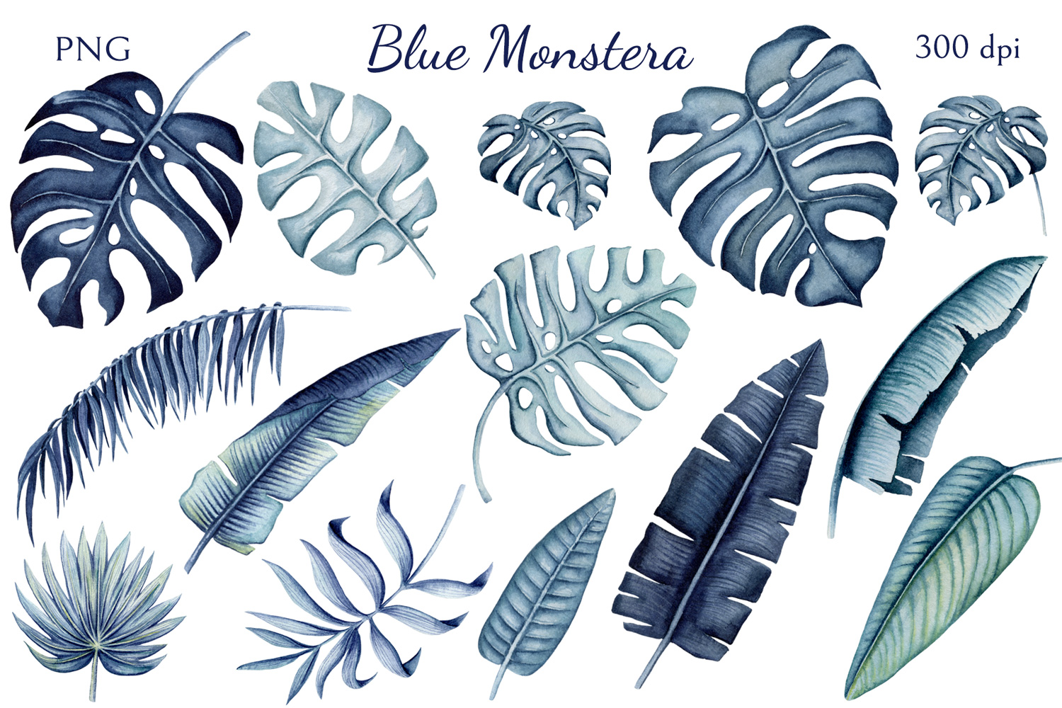 Blue Monstera example image 2