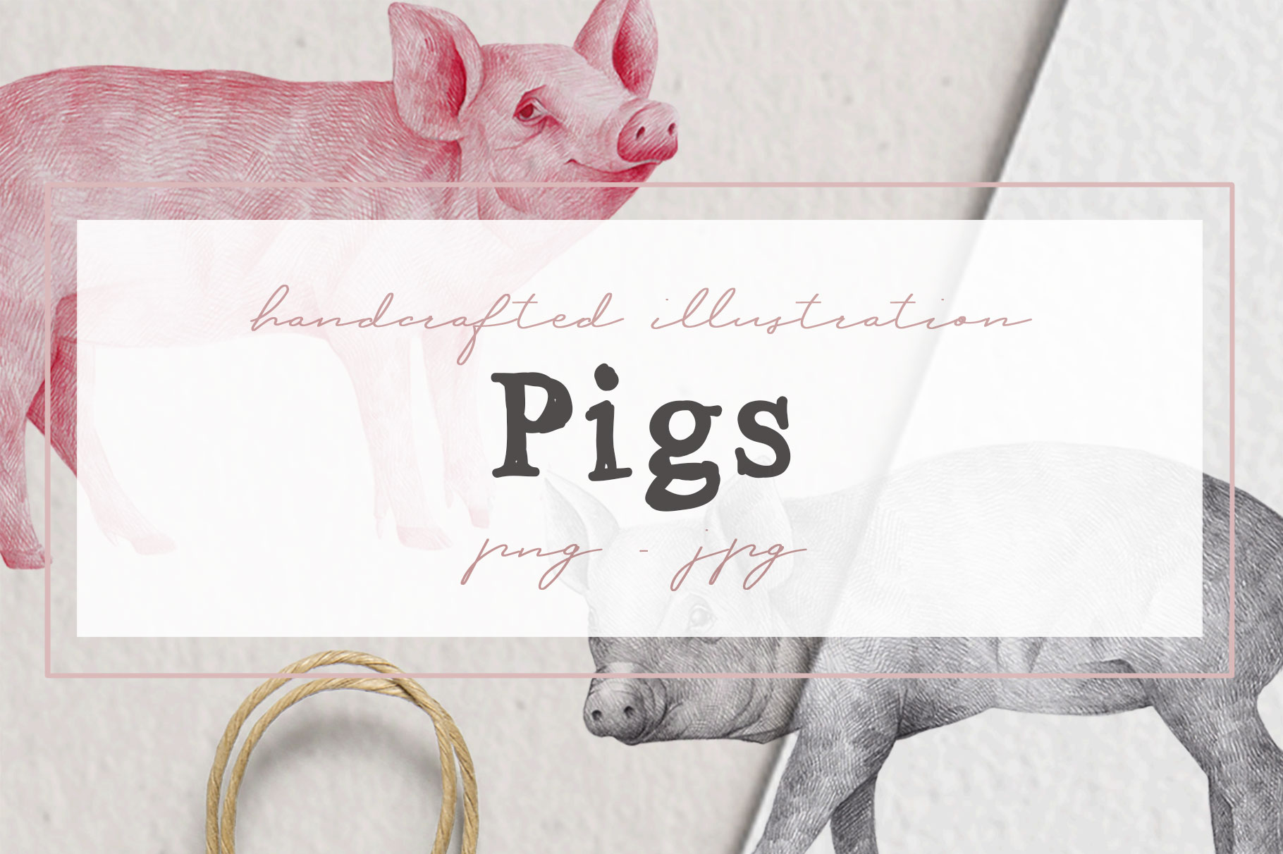 Hand drawn Illustrations Pigs example image 1