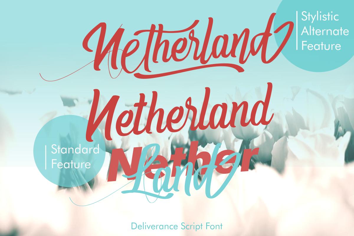 Deliverance | Modern Script Font example image 5