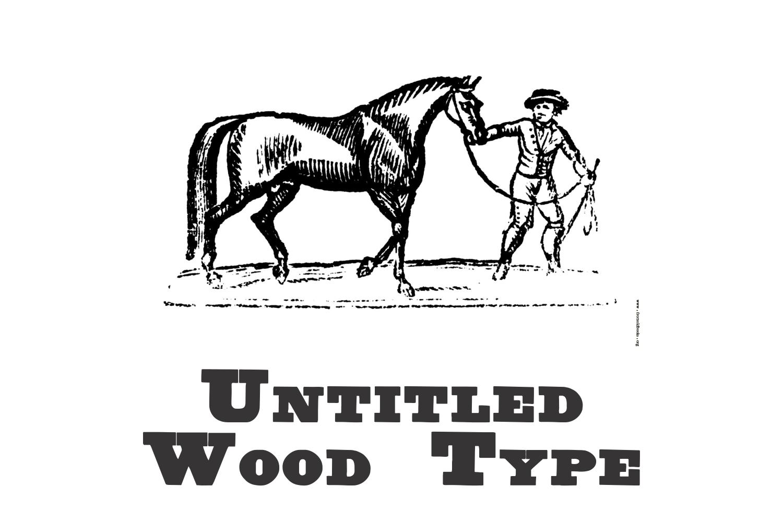 Untitled Wood Type example image 1