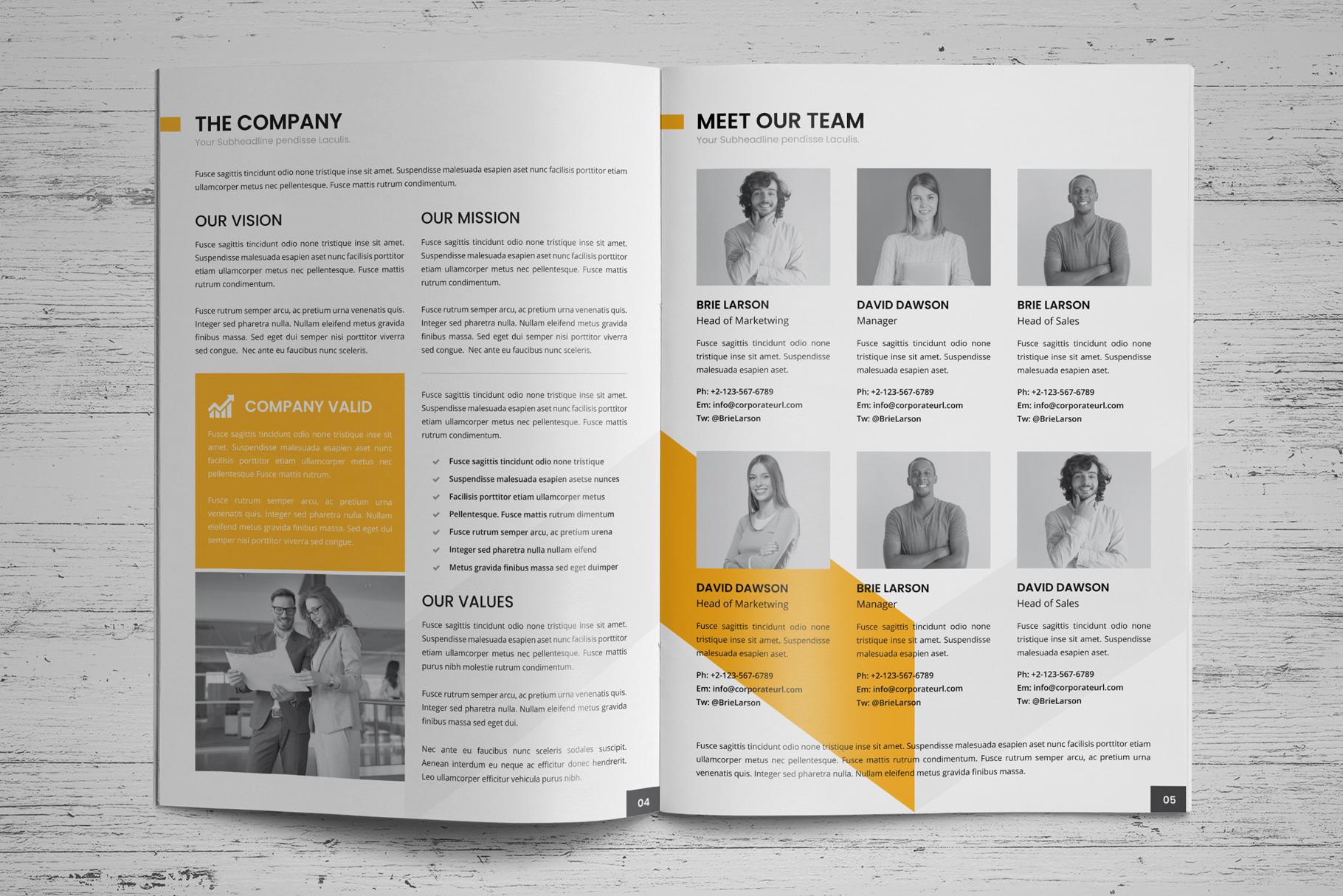 Company Profile Brochure v7 example image 3