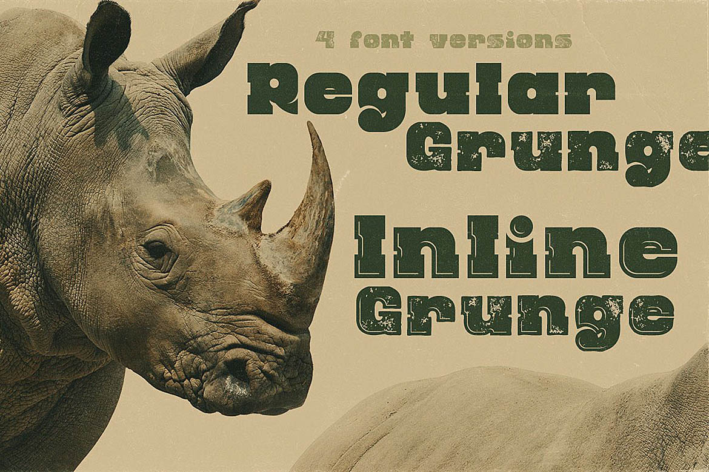 Rhino - Display Font example image 3