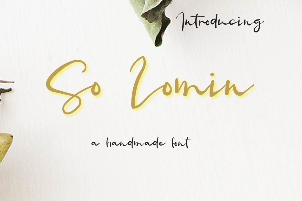 So Lomin Script Font example image 1
