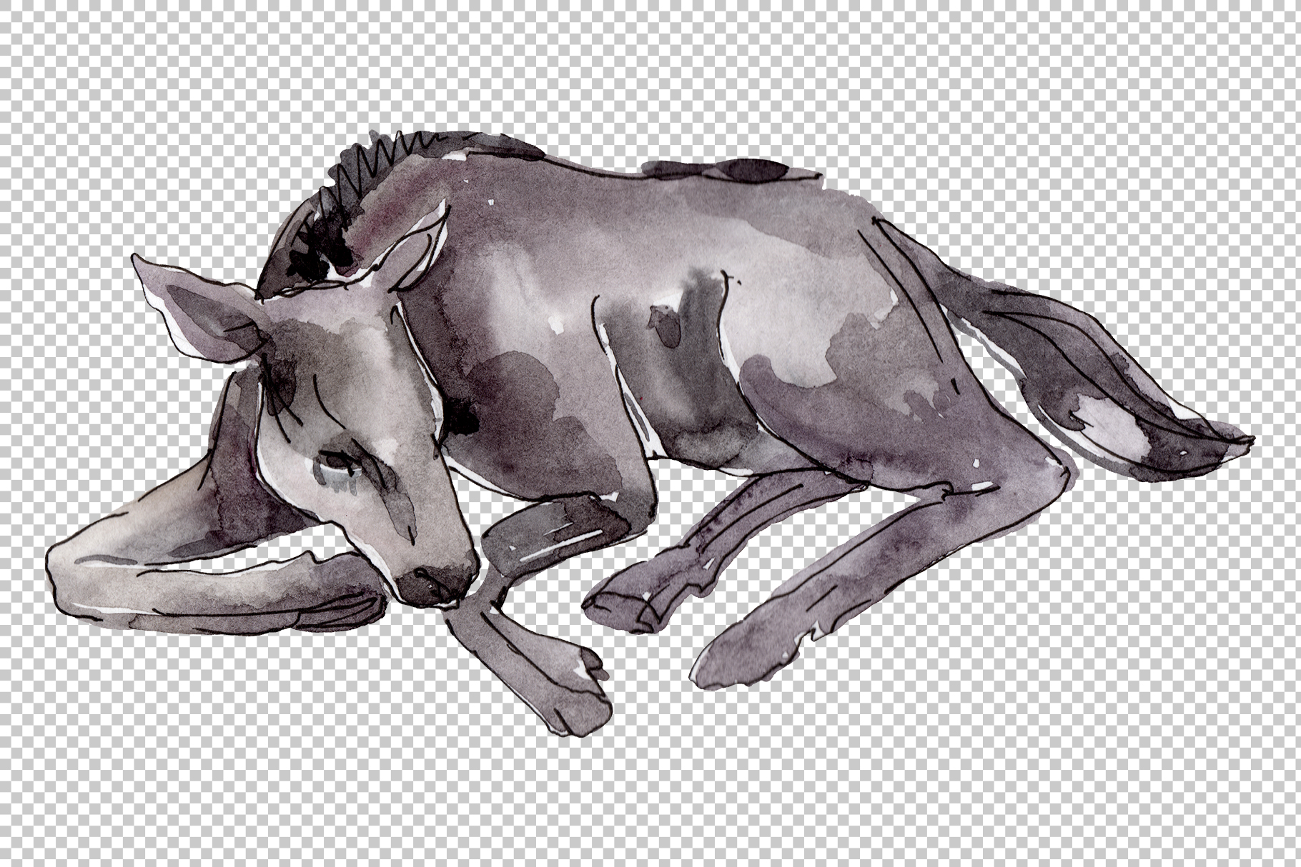Farm animals Horse, foal Watercolor png example image 4