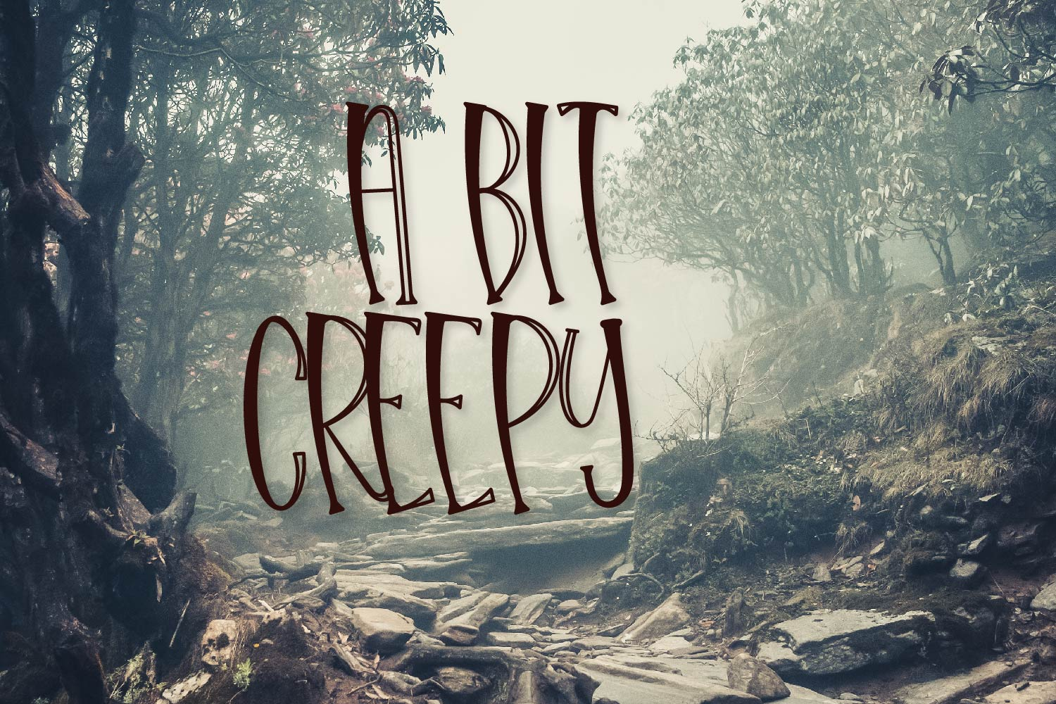 Hello Halloween - A Spooky Font example image 3