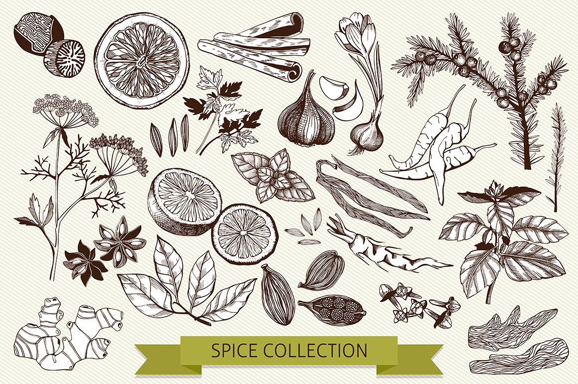 Ink Hand Drawn Spice Collection example image 2