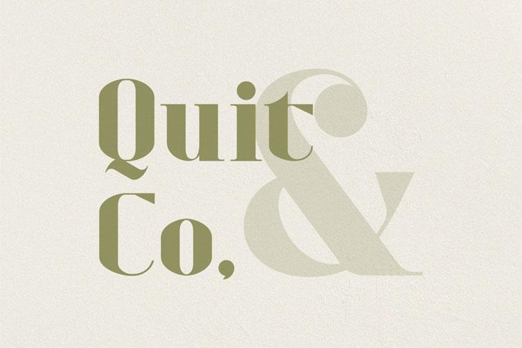 Refita. Modern Serif Font example image 6