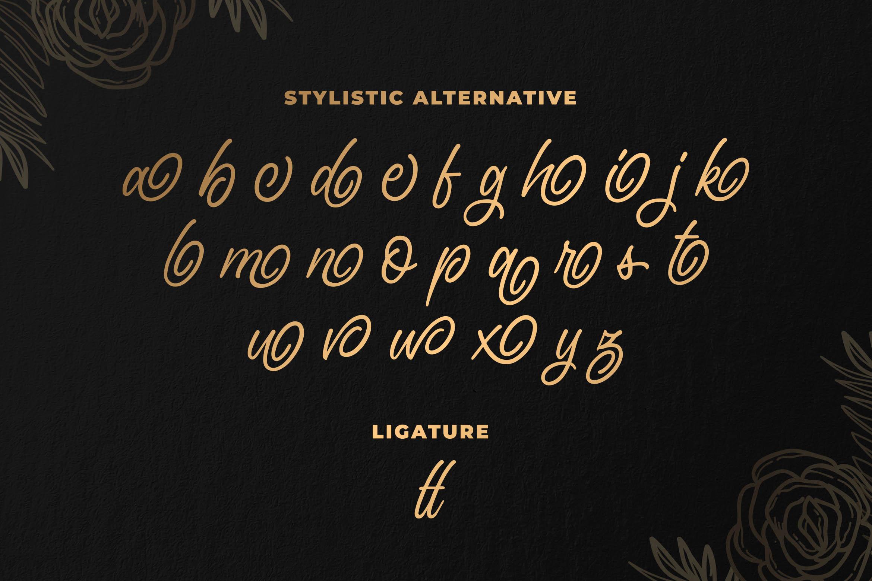 Saylena - Luxury Script Font example image 7