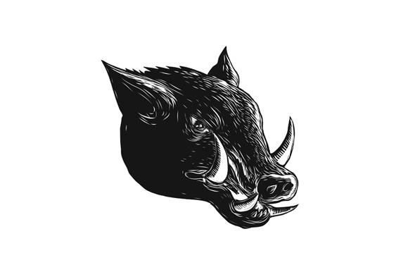 Razorback Wild Boar Scratchboard  example image 1