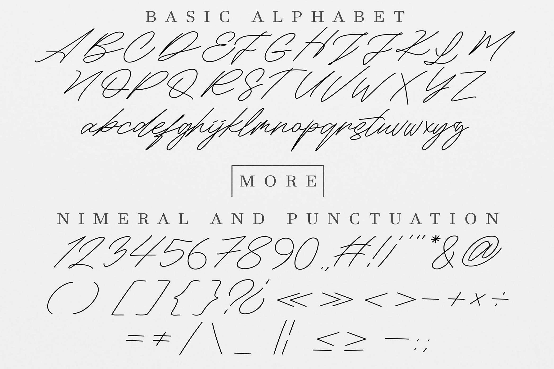 Maldins - Stylish Signature Font example image 10
