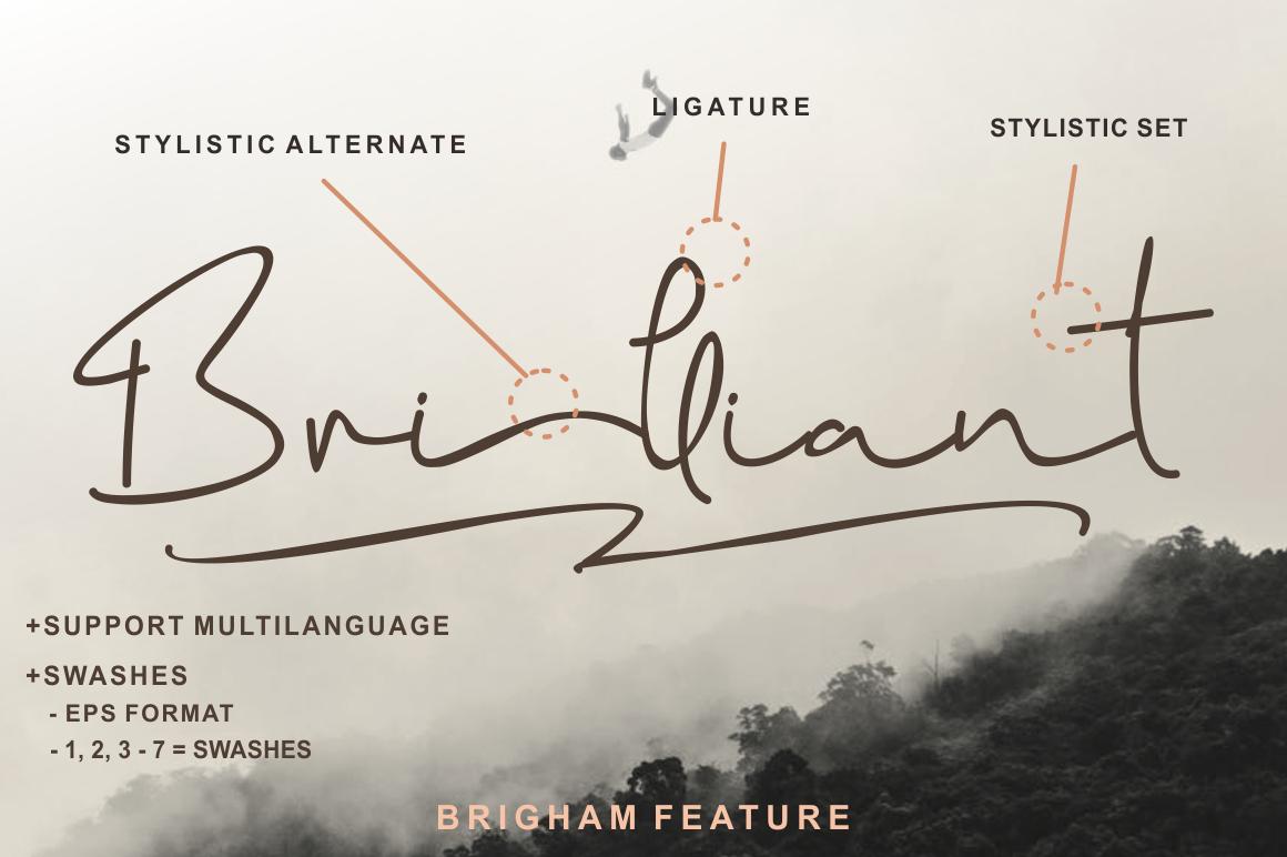 Brigham Signature Script example image 5