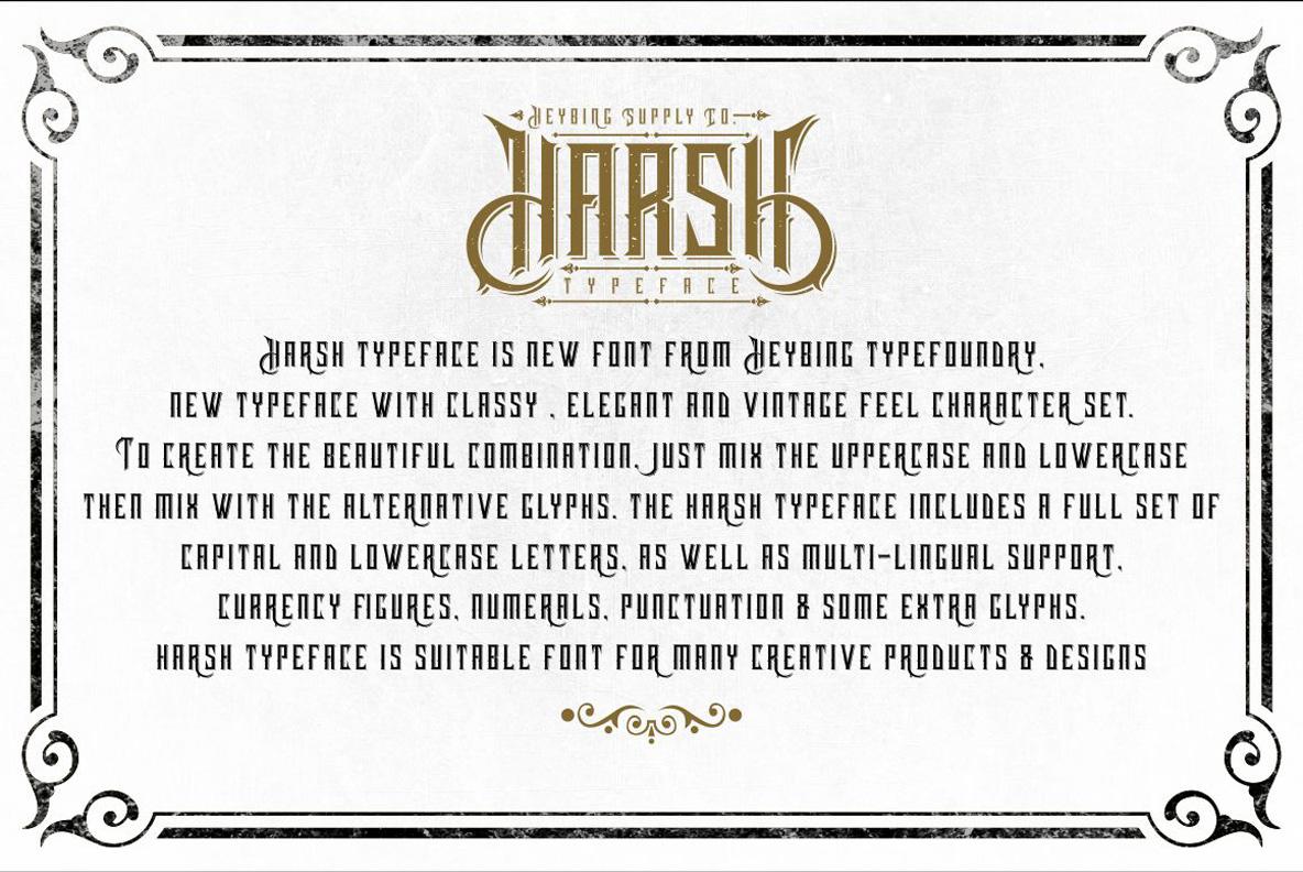 Harsh Typeface + Bonus example image 3