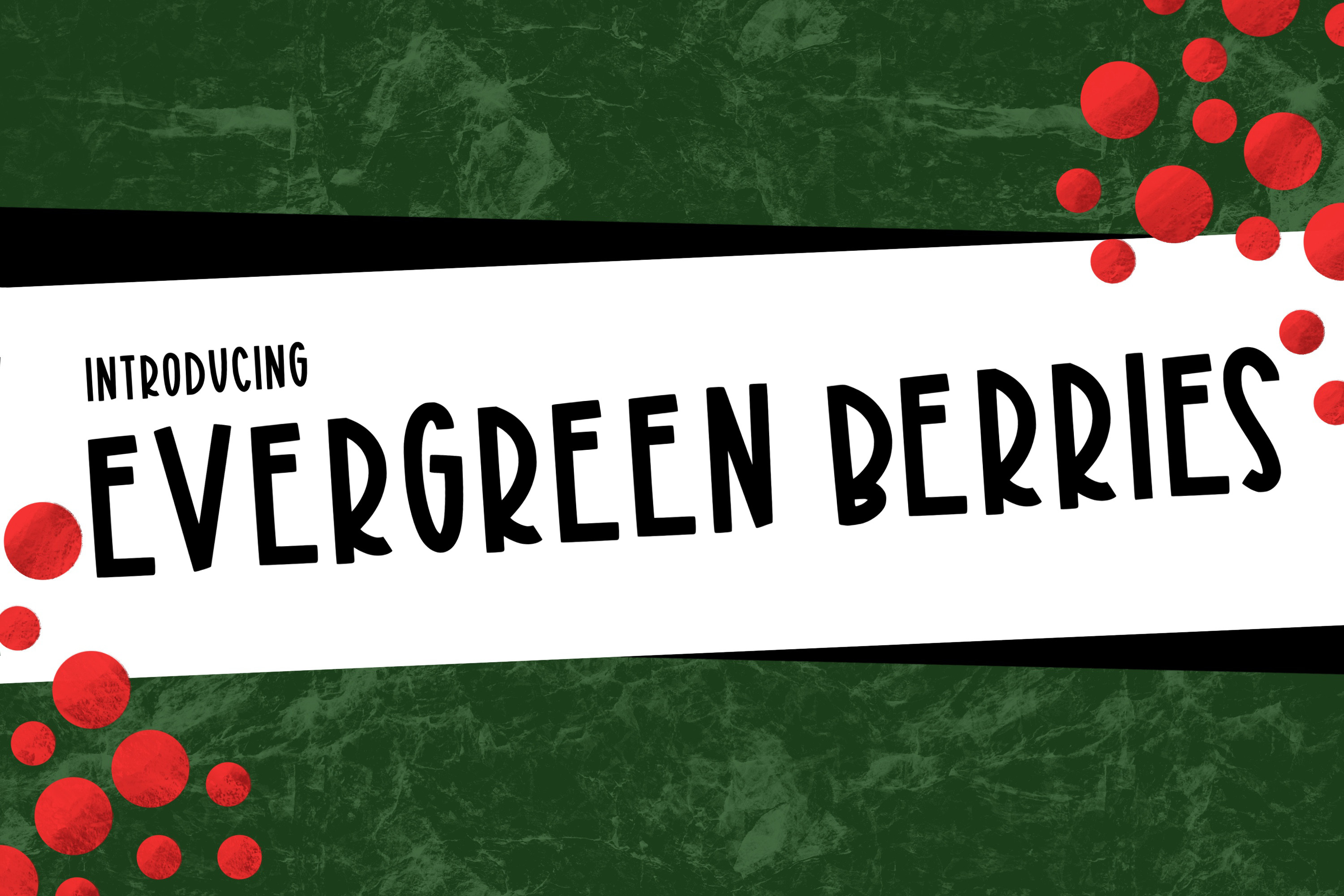 Evergreen Berries a Joyful Font example image 1