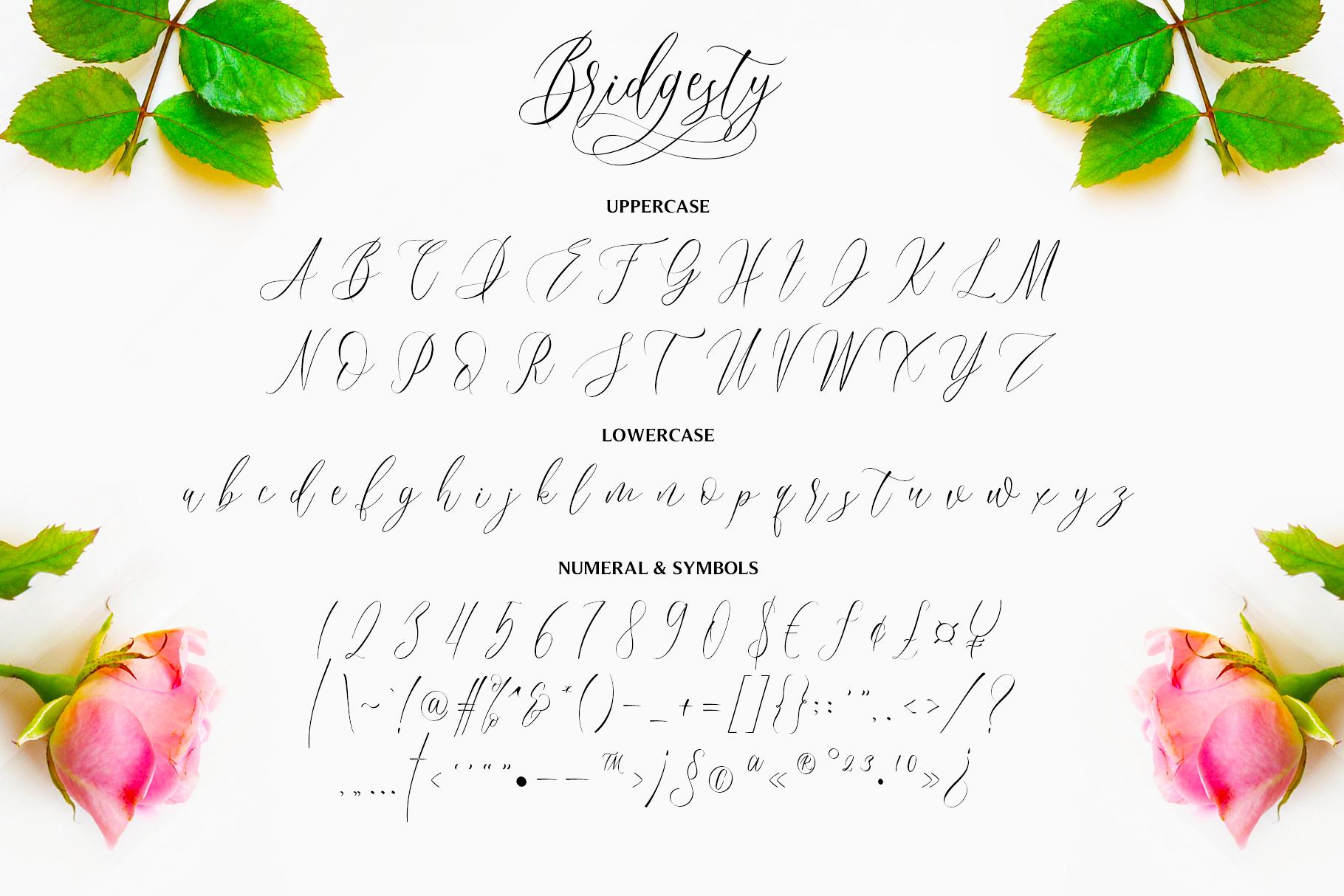 Bridgesty - Wedding Font example image 10