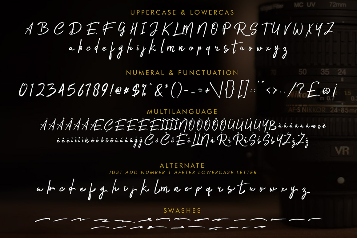 Rishtee Signature Font example image 7