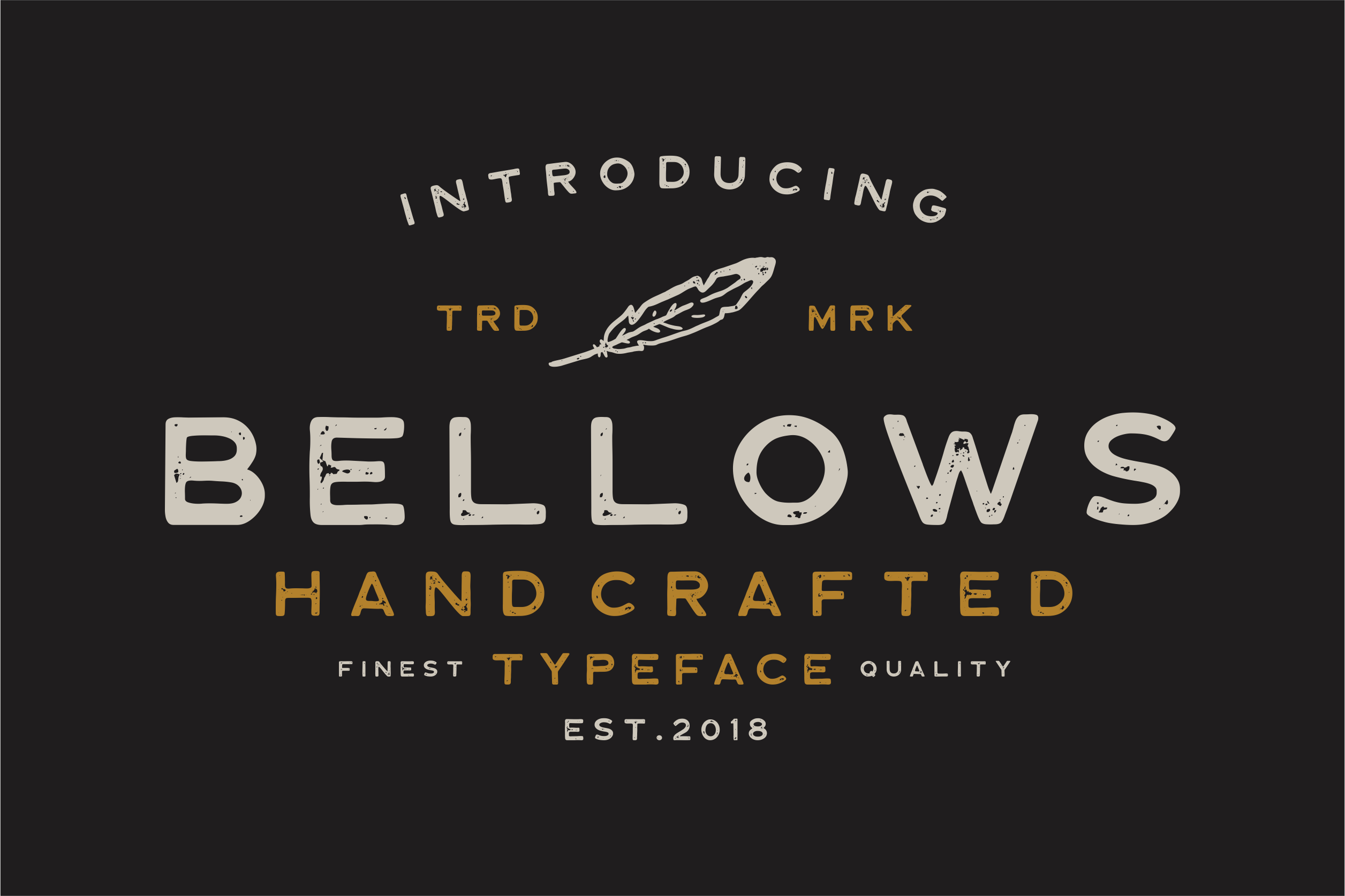 Bellows Typeface example image 1