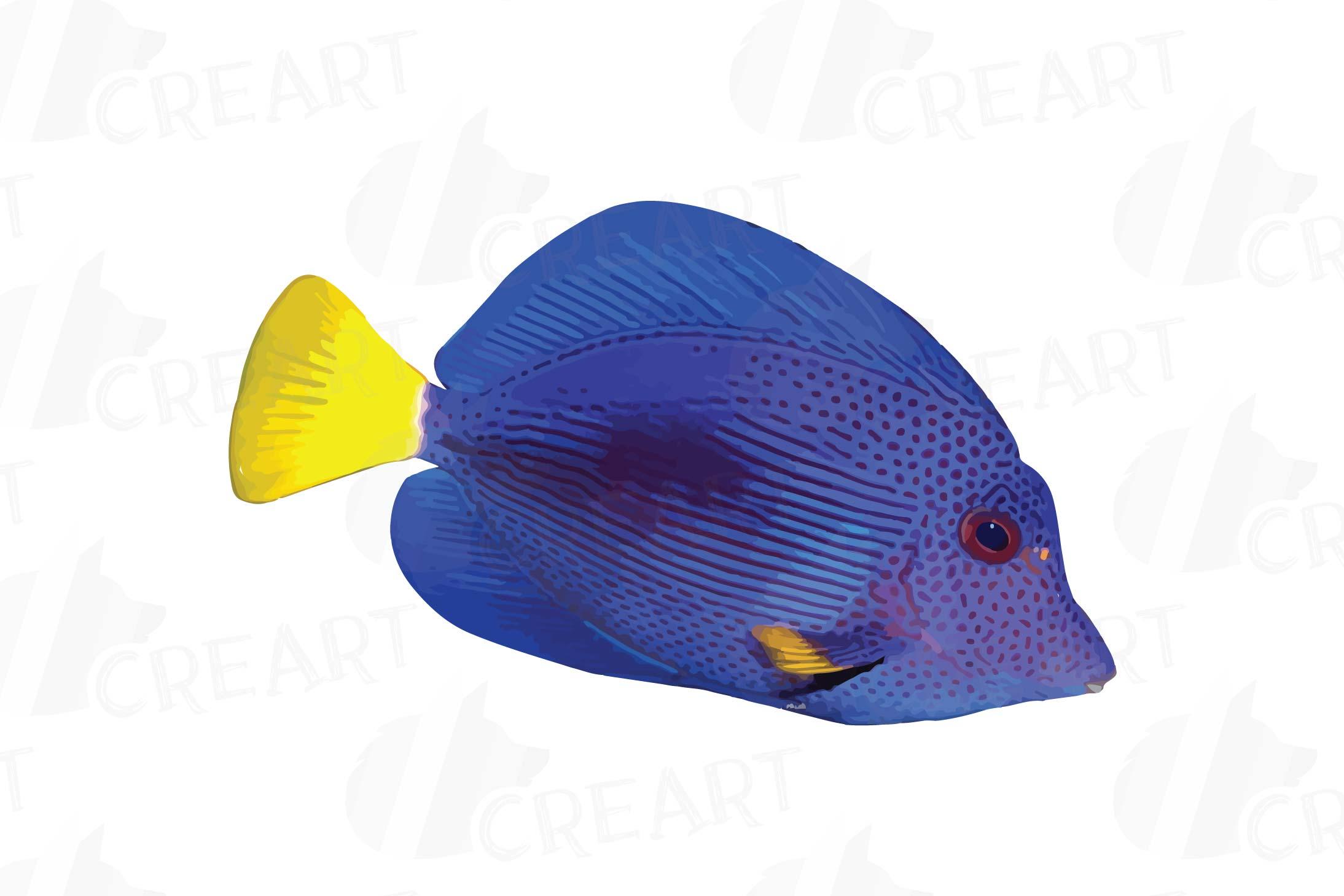 Watecolor Tropical Fish Clip Art 12 Vectors Example Image 11