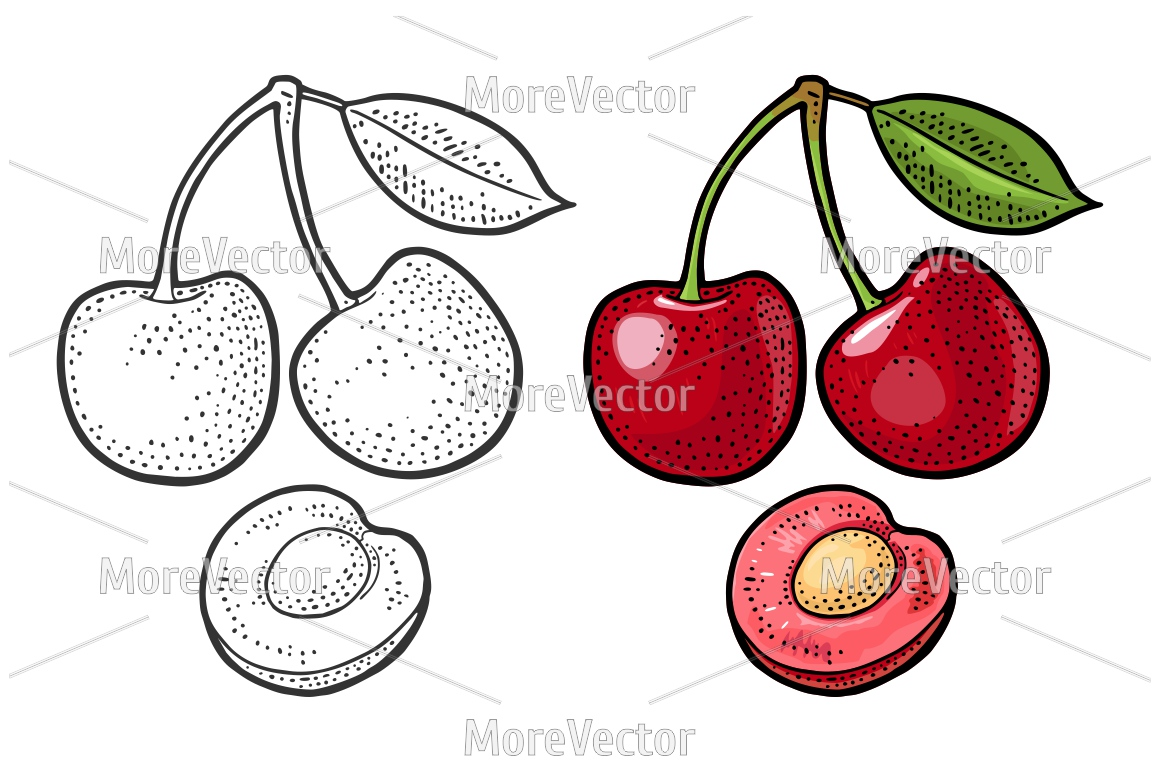 Whole and half cherry berry with seed and leaf.  example image 1
