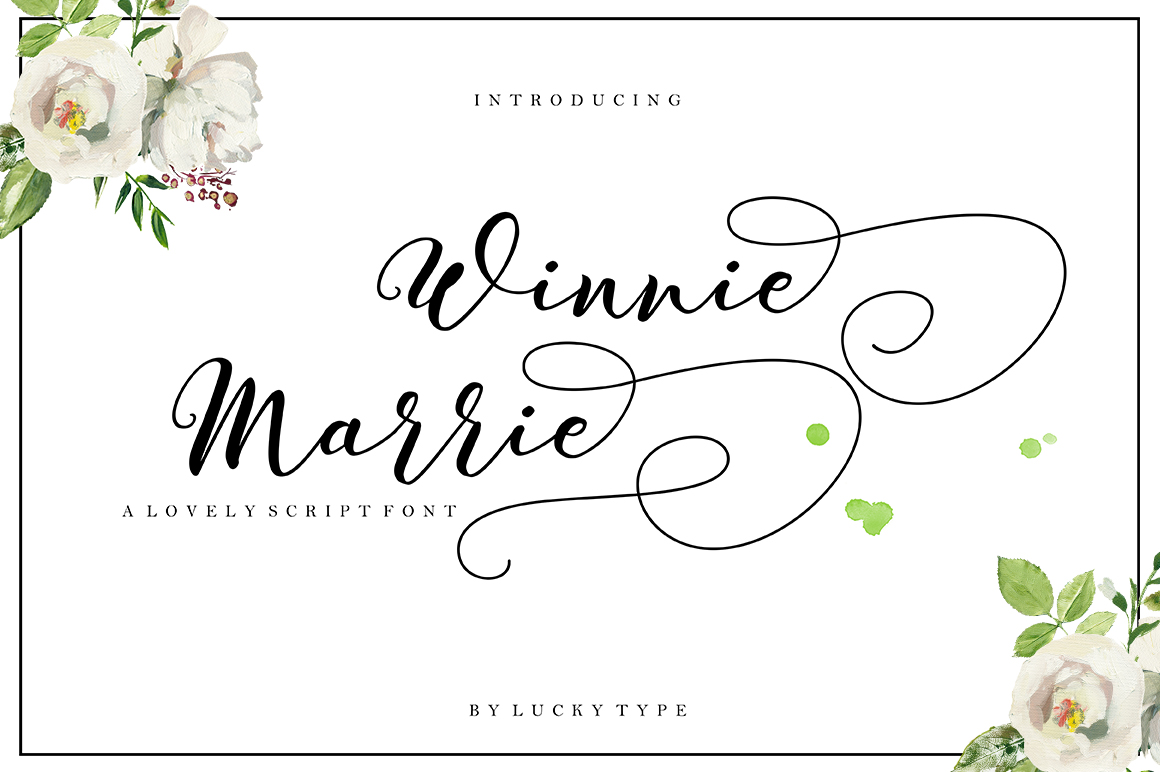 The Authentic Script Font Bundle example image 12