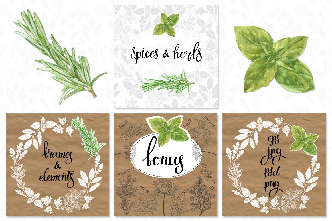 Spices and herbs example image 10