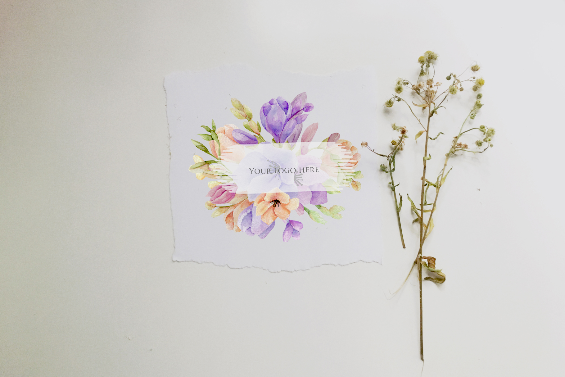 Freesia. 10 bouquets example image 3