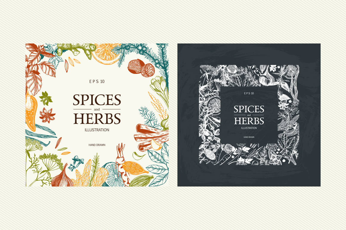 Ink Hand Drawn Spice Collection example image 9