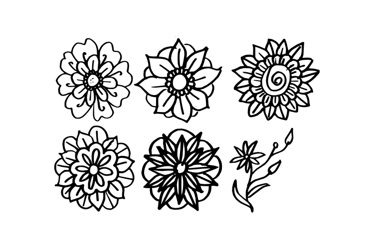 Hand Drawn Flower Vector example image 1