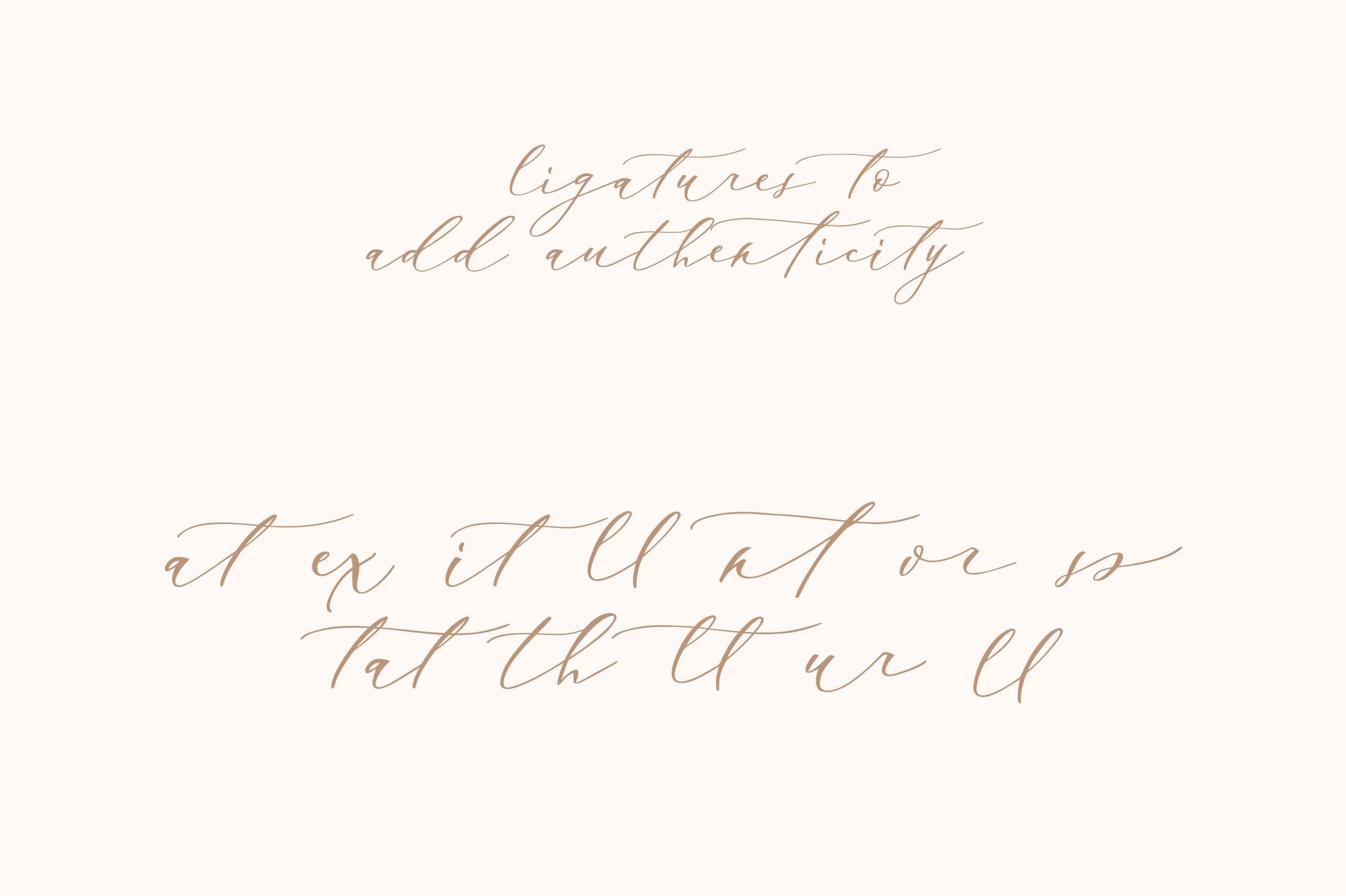 Enchantress | Luxury Font example image 4