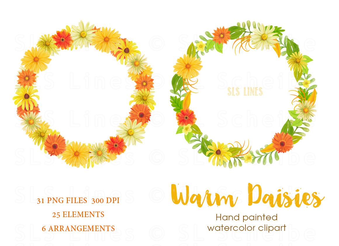 Warm Yellow & Orange Daisies, Watercolor PNG example image 4
