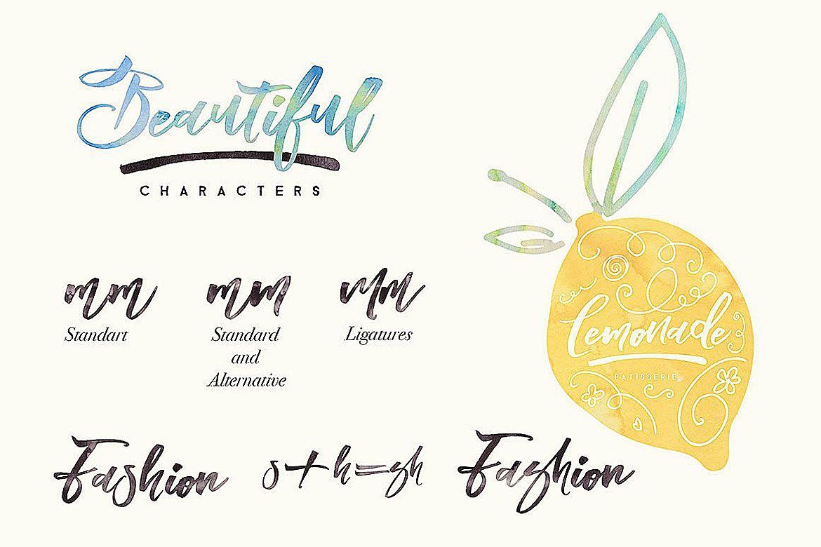Blomming - Brush Font example image 9