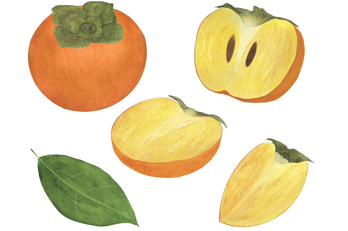 Set of persimmon watercolor illustrations. example image 2