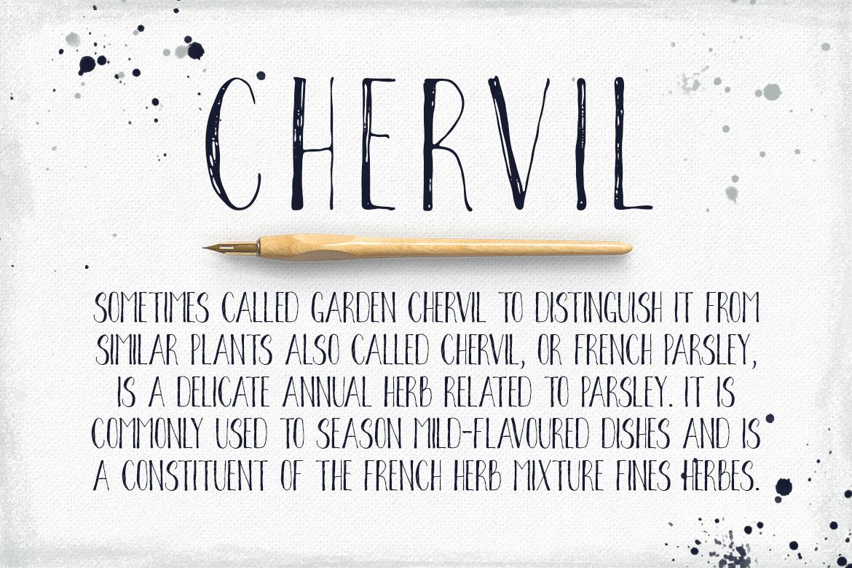 Chervil example image 2