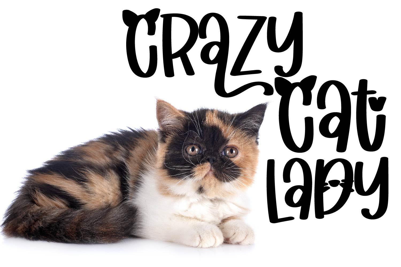 Catitude - A sassy cat font example image 3