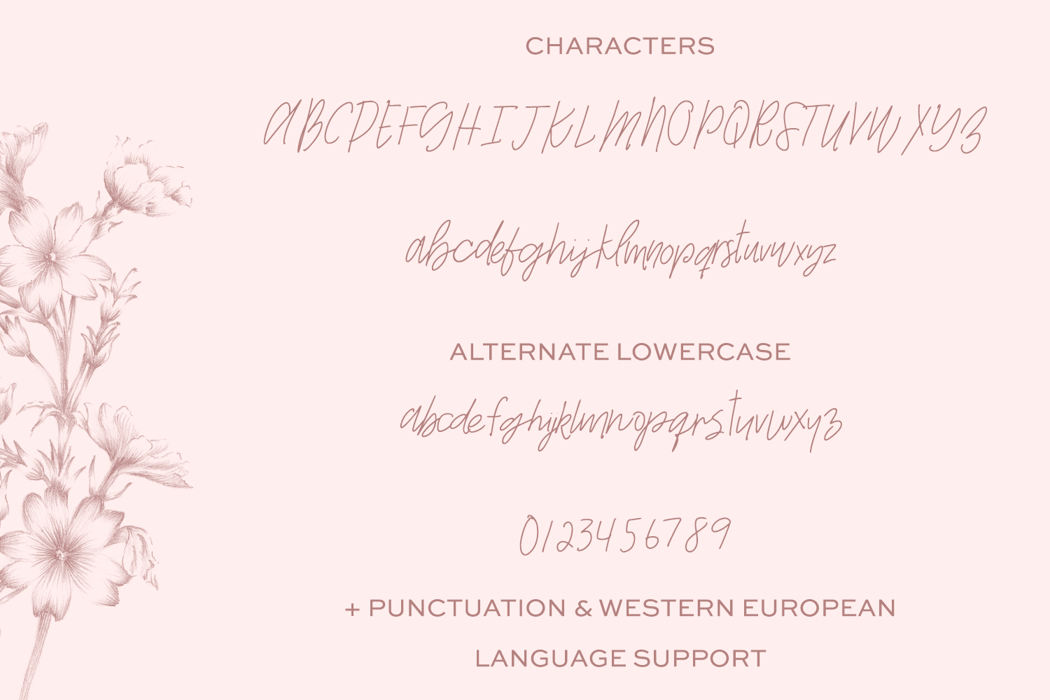 The Signature Font Bundle by Beck McCormick example image 9