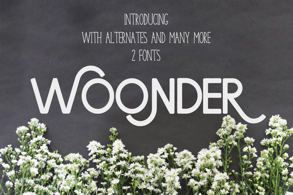 Woonder example image 1