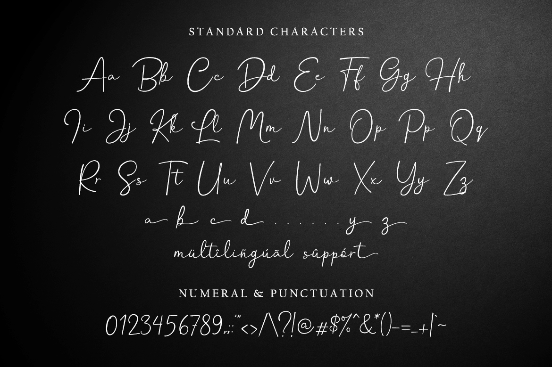 Hanston | Luxury Signature Font example image 11