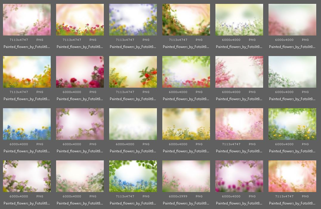 40 Painted Flowers Photo Overlays example image 4