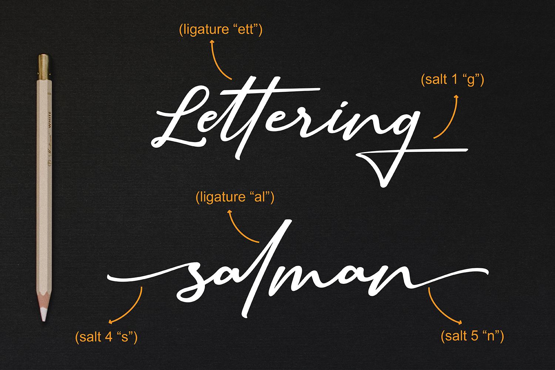 Sallim   Signature Font example image 3