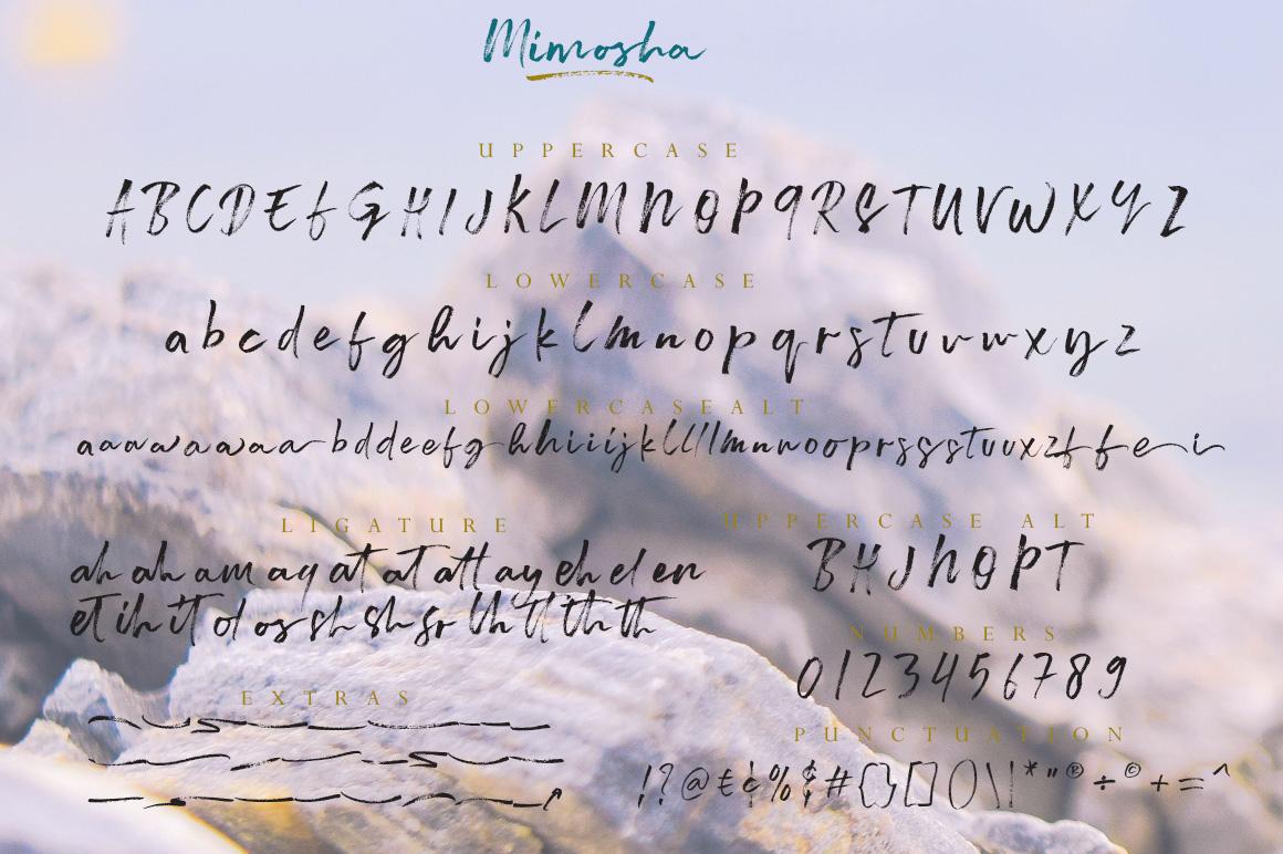 Mimosha Brush Script example image 7