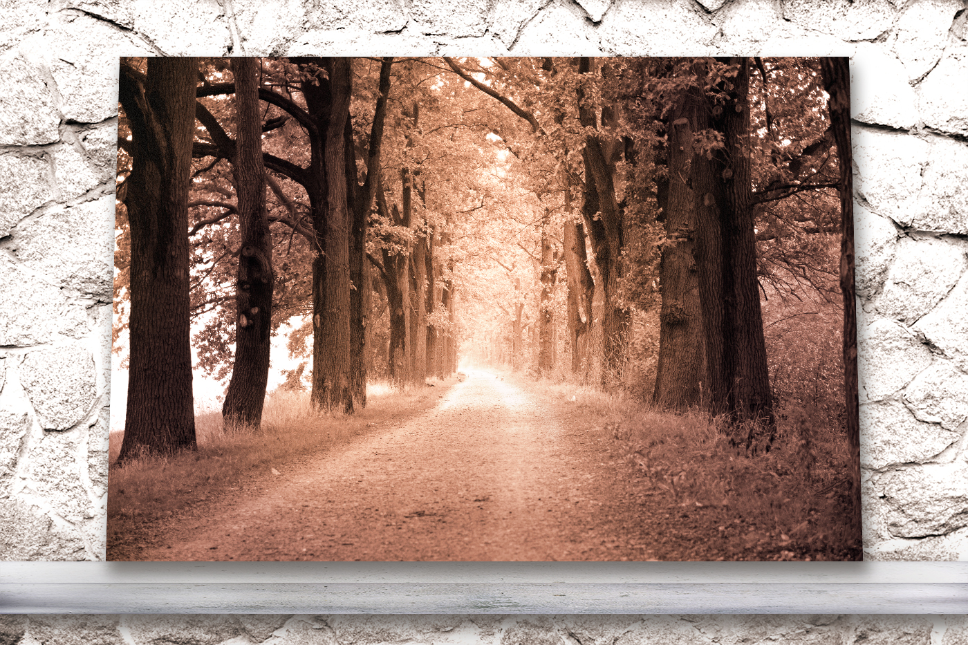 Nature photo, landscape photo, autumn alley photo, example image 4