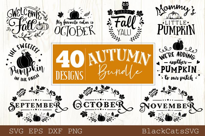 Autumn SVG bundle 40 designs Fall and pumpkins SVG bundle example image 4