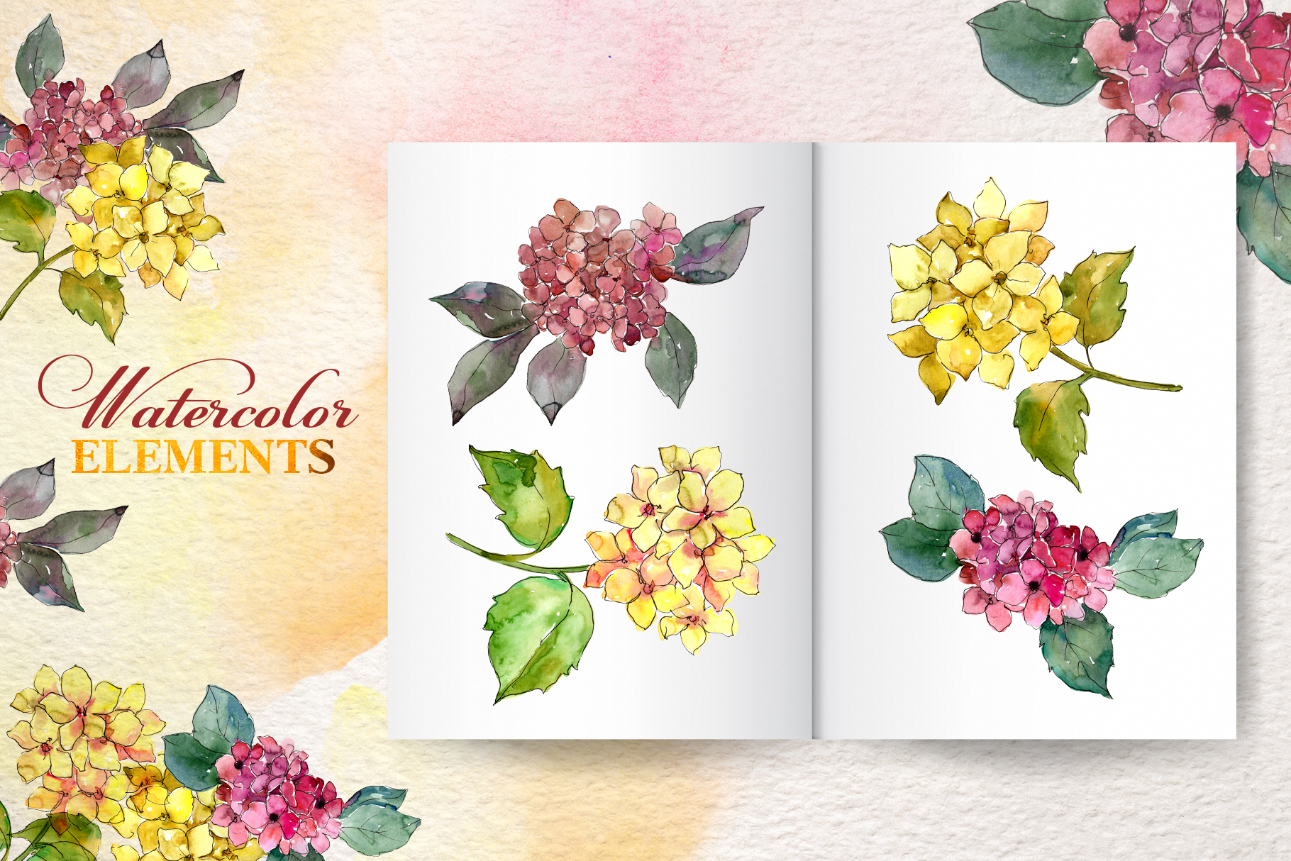 Hydrangeas Yellow-pink Watercolor png example image 7