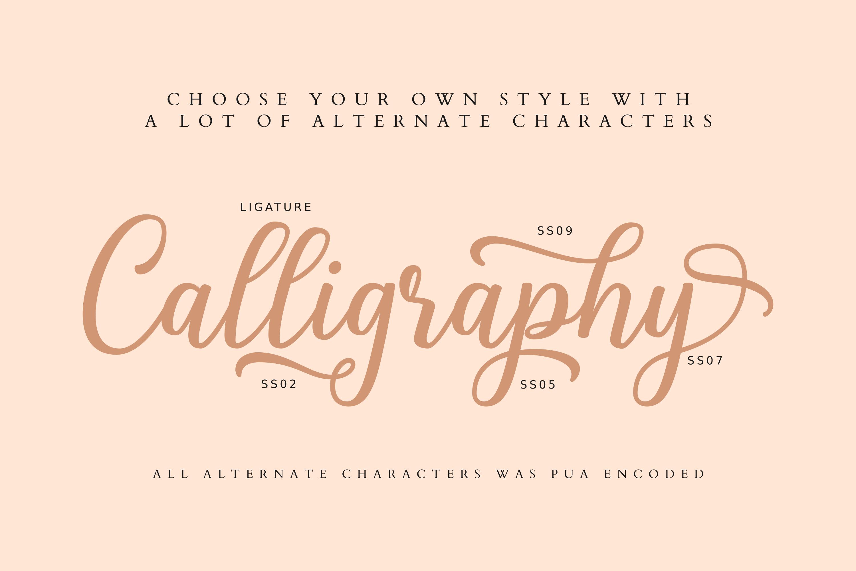 Shalinta - Calligraphy Font example image 3